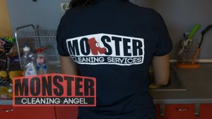 Monster Cleaners Angel
