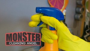 Monster Cleaning Angel